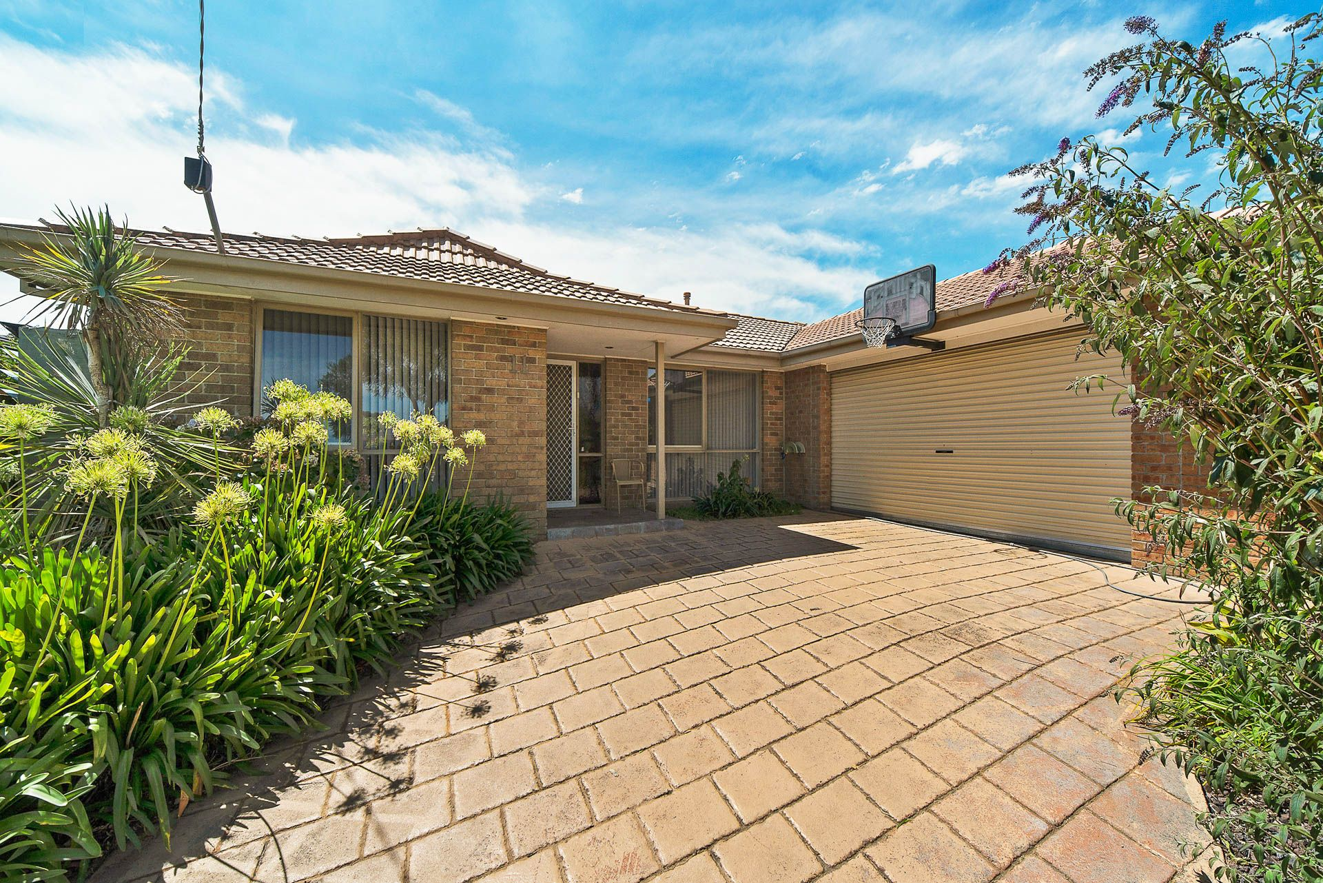 11 Allied Drive, CARRUM DOWNS, VIC, 3201 - Image